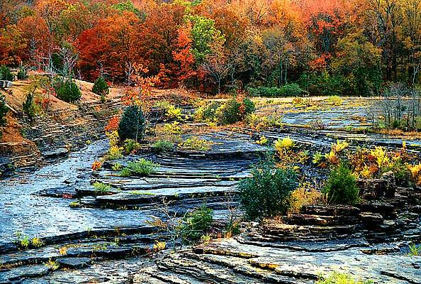 Photograph of fall color in northern Arkansas at the old Lake Fort Smith Sate Park.