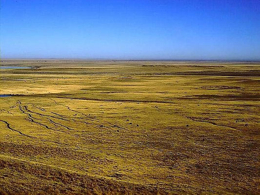 Picture of Wyoming prairie.